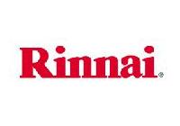 Ремонт отопительных систем Rinnai